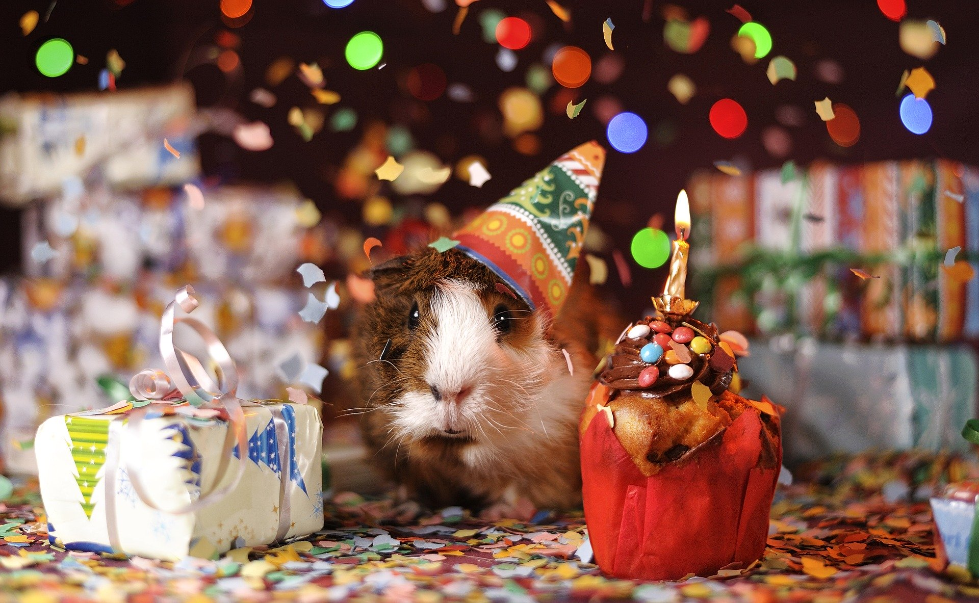 Wish A Happy Birthday To Someone Celebrating Their Birthday During The Coronavirus Shutdown Bicester Advertiser