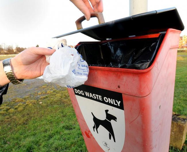Dog poo bag dispenser trial is coming to Bicester
