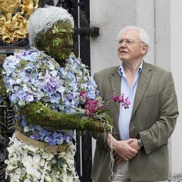 Sir David Attenborough takes a look at a floral sculpture of himself created by three times Chelsea Flower show Gold Medalist Joe Massie (AP Photo)