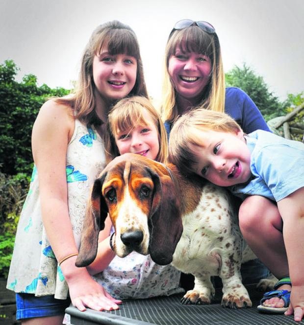 Molly the dog is off to Oz after Mail appeal