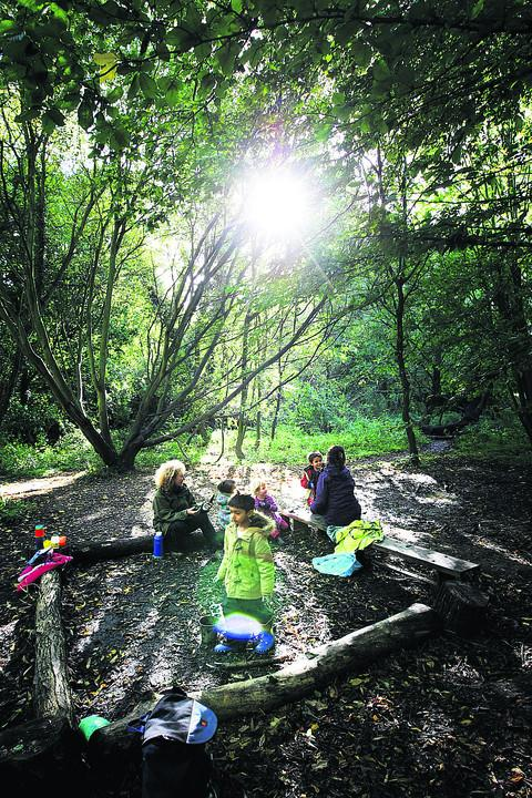 Children from the Comper Foundation Stage School, in East Oxford, pictured during a lesson in a forest classroom run by the Nature Effect charity