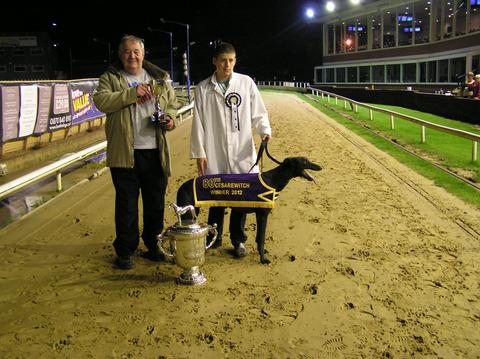 Droopys Xavier after winning the Cesarewitch at Oxford Stadium last Saturday