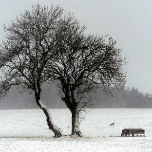 Forecasters warned there could be snow over the week