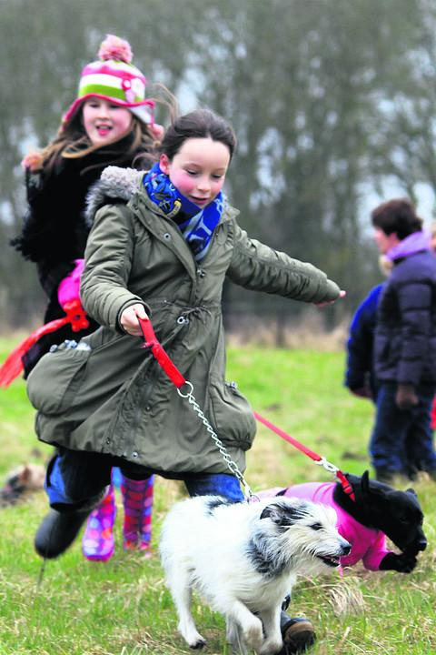 Leahy Disley, front, 10, and Holly Dance, 10, at the dog walkathon