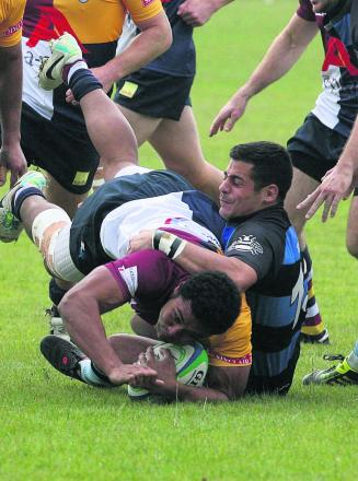 Seisoni Tupou returns for Harlequins