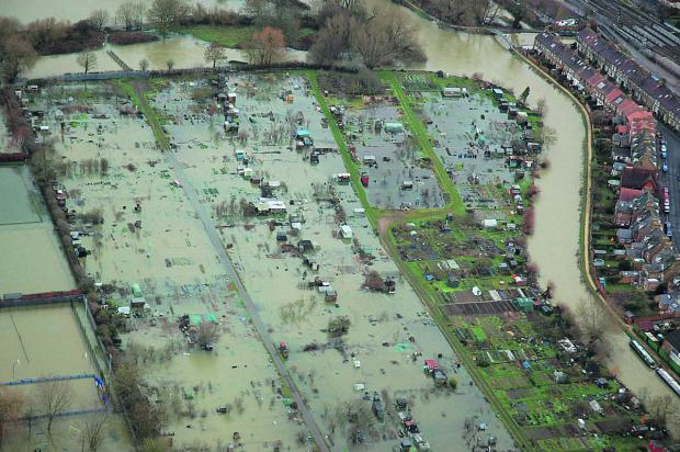 Bicester Advertiser: Allotments off Botley Road in Oxford inundated with water during the recent floods
