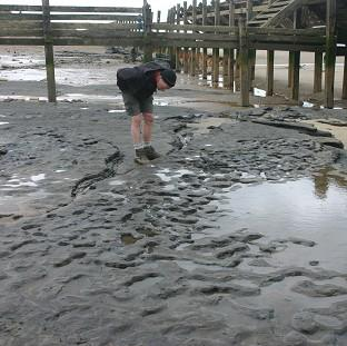 Bicester Advertiser: Some of the oldest human footprints in the world, thought to be more than 800,000 years old, found in silt on the beach at Happisburgh on the Norfolk coast (British Museum/PA)