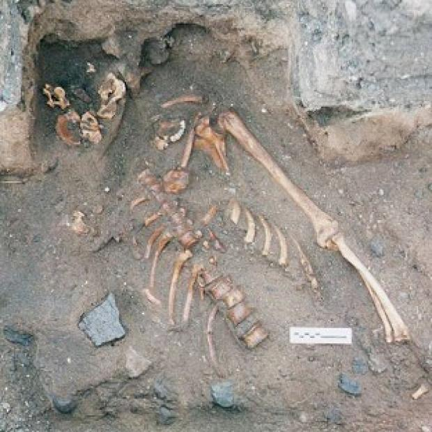 Bicester Advertiser: The skeleton of a young man dating from the the 12th or 13th centuries, which was found during an archaeological dig at the Scottish Seabird Centre in North Berwick (Historic Scotland/PA)