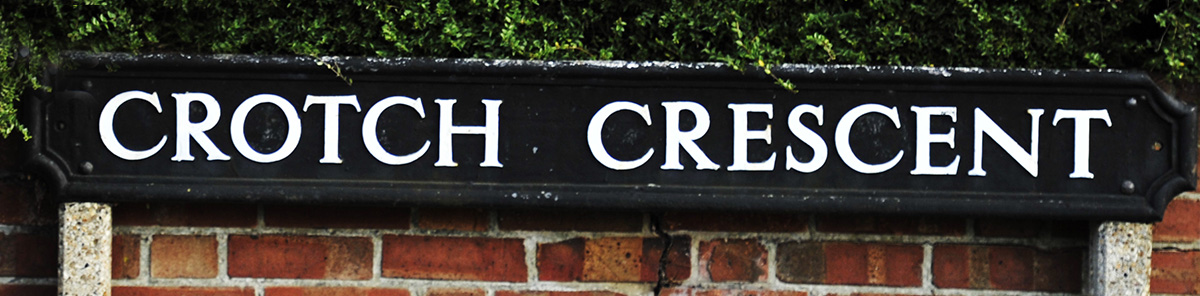 Crotch Crescent in Marston