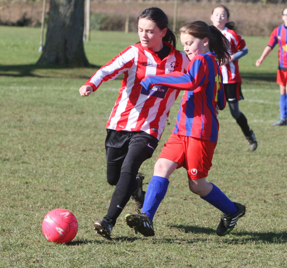 Summertown's Ainara Sauca Wences tangles with Tower Hill rival Charmaine Leach during their Under 11 League Cup clash which the latter won 1-0