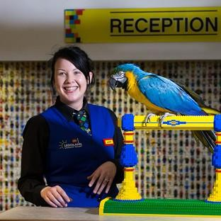 Bicester Advertiser: Charlie the parrot chats with receptionist Amber Dixon at the Legoland Windsor Resort Hotel in Berkshire.