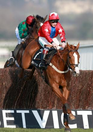 Sire De Grugy leads Somersby over the last fence to win the BetVictor Queen Mother Champion Chase