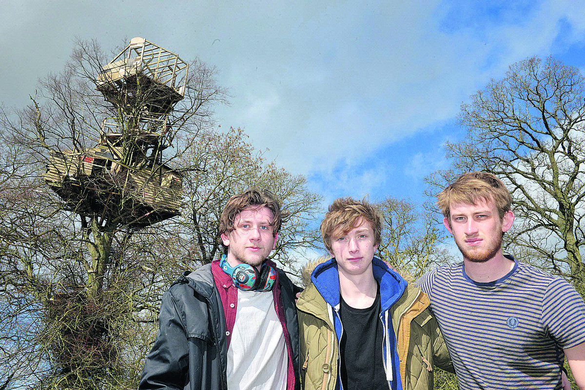 From left, Alden Conley, Harry Court and Dougie Haynes with their impressive treehouse behind.  Pictures: OX66105 Simon Williams