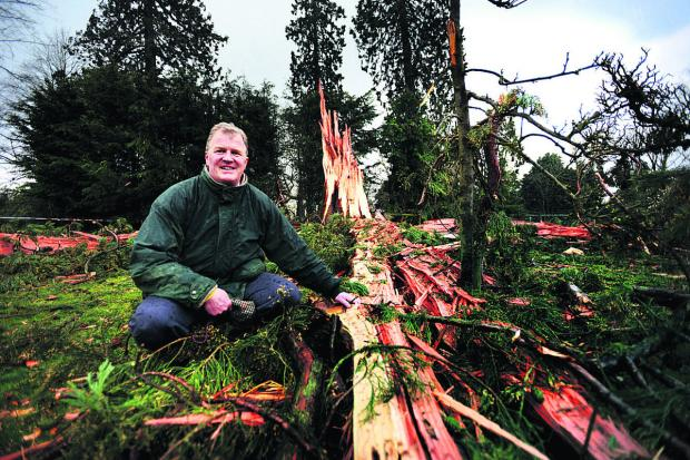 Bicester Advertiser: Nicholas Kaye with the tree that was destroyed by lighting