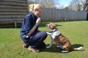 Kenny with Laura Croft, Small animal manager at Blue Cross in Burford