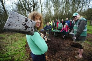 Volunteers team up to plant flower meadow as a boost to bee populations