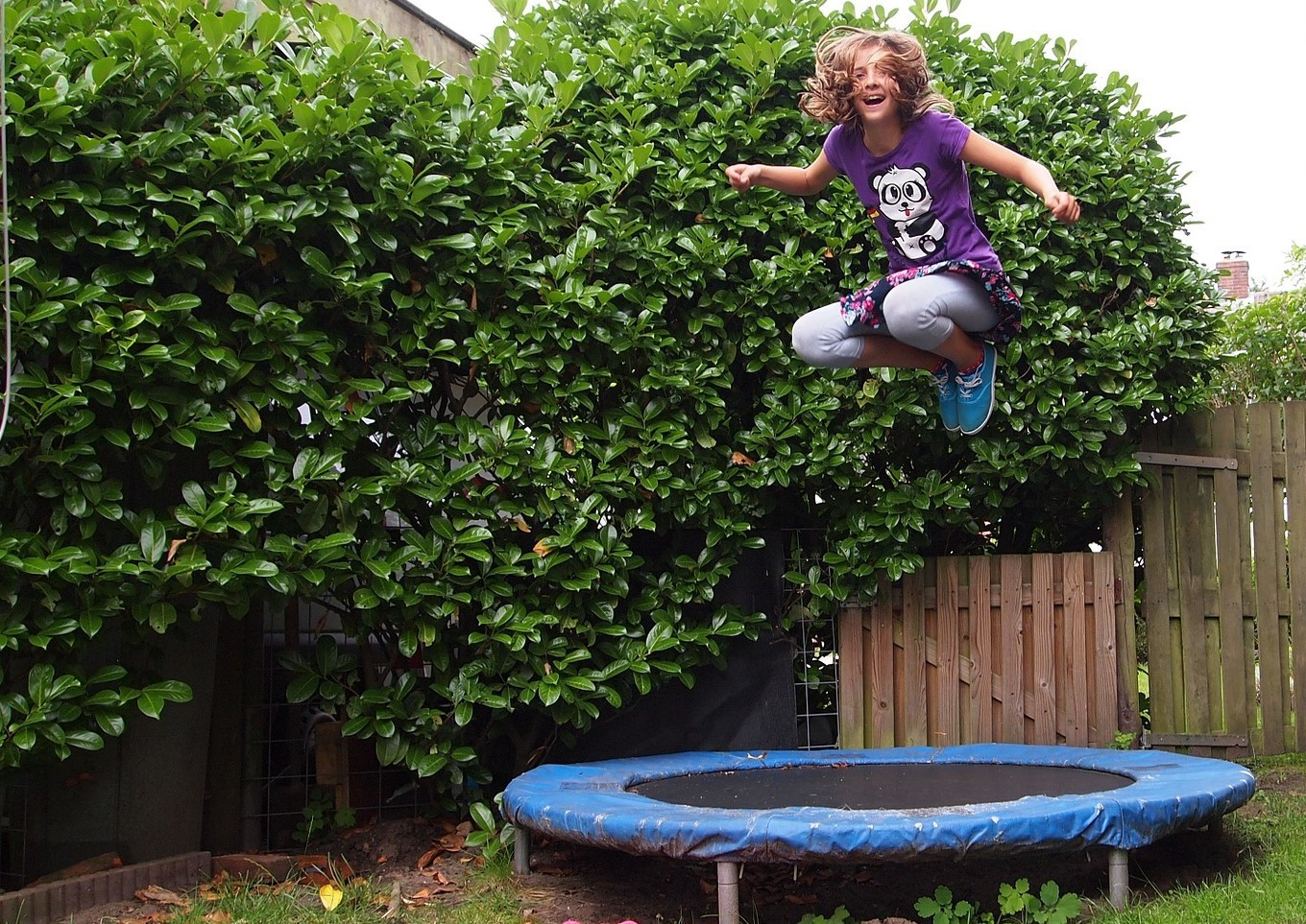 Stock trampolining picture