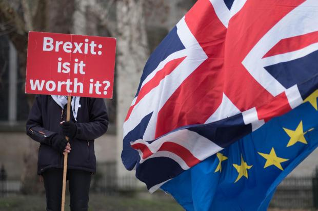 An anti-Brexit demonstration outside the Houses of Parliament earlier this year. Photo: Stefan Rousseau/PA Wire